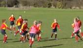 Rugby Netball with 4 Goals